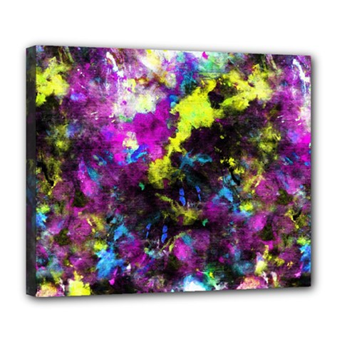 Colour Splash G264 Deluxe Canvas 24  X 20   by MedusArt