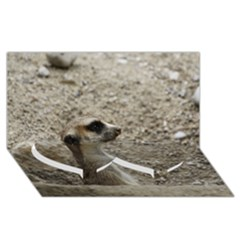 Adorable Meerkat Twin Heart Bottom 3d Greeting Card (8x4)  by ImpressiveMoments