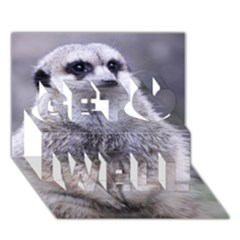 Adorable Meerkat 03 Get Well 3d Greeting Card (7x5)
