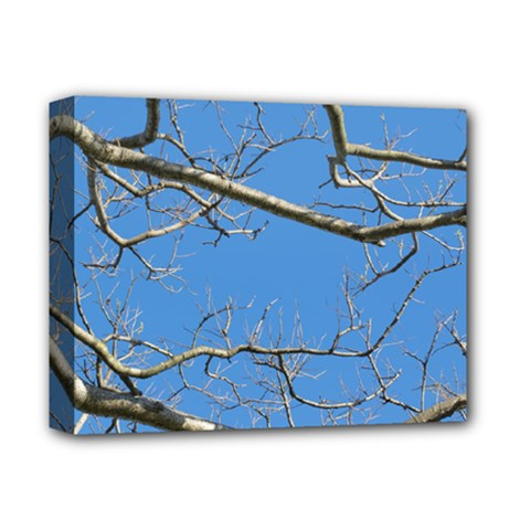 Leafless Tree Branches Against Blue Sky Deluxe Canvas 14  X 11  by dflcprints