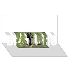 Belgian Tervuren Laying BEST BRO 3D Greeting Card (8x4)  by TailWags