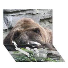 Tired Bear Love Bottom 3d Greeting Card (7x5)