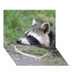 Racoon 1115 Heart Bottom 3d Greeting Card (7x5)  by MoreColorsinLife