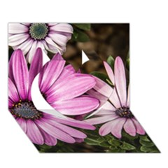 Beautiful Colourful African Daisies  Heart 3d Greeting Card (7x5)  by OZMedia