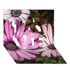 Beautiful Colourful African Daisies  Love 3d Greeting Card (7x5)  by OZMedia