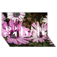 Beautiful Colourful African Daisies  #1 Dad 3d Greeting Card (8x4)  by OZMedia