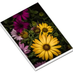 Beautiful Colourful African Daisies  Large Memo Pads by OZMedia