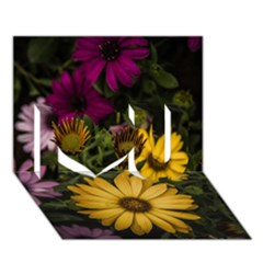 Beautiful Colourful African Daisies  I Love You 3d Greeting Card (7x5)  by OZMedia