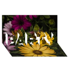 Beautiful Colourful African Daisies  Party 3d Greeting Card (8x4)