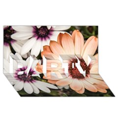 Beautiful Colourful African Daisies Party 3d Greeting Card (8x4)  by OZMedia