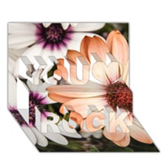 Beautiful Colourful African Daisies You Rock 3d Greeting Card (7x5)  by OZMedia