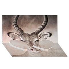 Antelope Horns Twin Heart Bottom 3d Greeting Card (8x4)
