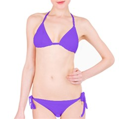Purple Bikini by 4SeasonsDesigns