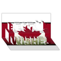 Style 9 Best Wish 3d Greeting Card (8x4)  by TheGreatNorth