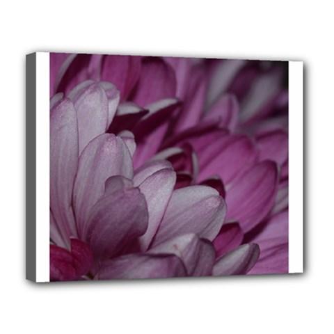 Purple! Canvas 14  X 11  by timelessartoncanvas