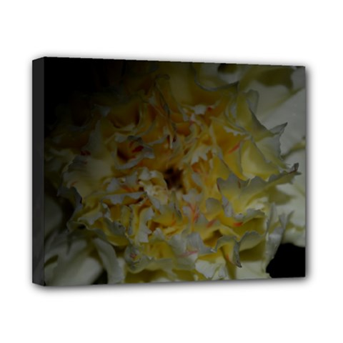 Yellow Flower Canvas 10  X 8  by timelessartoncanvas