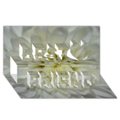 White Flowers Best Friends 3d Greeting Card (8x4)  by timelessartoncanvas