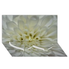 White Flowers Twin Heart Bottom 3d Greeting Card (8x4)  by timelessartoncanvas