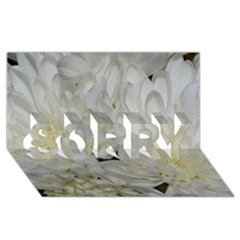 White Flowers 2 Sorry 3d Greeting Card (8x4)  by timelessartoncanvas