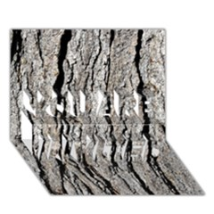 Tree Bark You Are Invited 3d Greeting Card (7x5)  by trendistuff