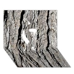 Tree Bark Ribbon 3d Greeting Card (7x5)