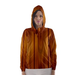 Shiny Striated Panel Hooded Wind Breaker (women) by trendistuff