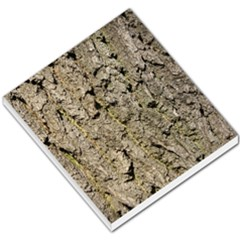 Grey Tree Bark Small Memo Pads