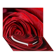 Beautifully Red Heart Bottom 3d Greeting Card (7x5)