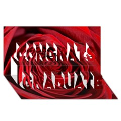 Beautifully Red Congrats Graduate 3d Greeting Card (8x4)  by timelessartoncanvas