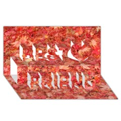 Red Maple Leaves Best Friends 3d Greeting Card (8x4)  by trendistuff