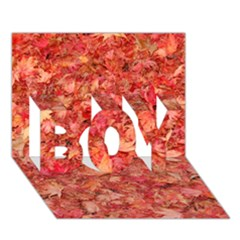 Red Maple Leaves Boy 3d Greeting Card (7x5)