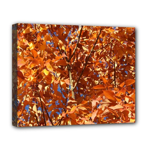 Orange Leaves Deluxe Canvas 20  X 16   by trendistuff