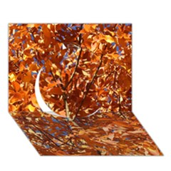 Orange Leaves Circle 3d Greeting Card (7x5)  by trendistuff