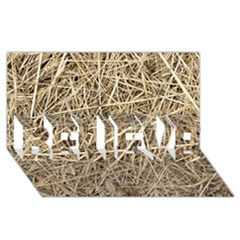 Light Colored Straw Believe 3d Greeting Card (8x4)  by trendistuff