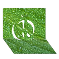 Green Leaf Drops Peace Sign 3d Greeting Card (7x5)  by trendistuff