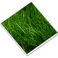 Green Grass 1 Small Memo Pads