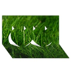 Green Grass 1 Twin Hearts 3d Greeting Card (8x4)