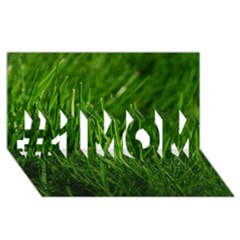 Green Grass 1 #1 Mom 3d Greeting Cards (8x4)