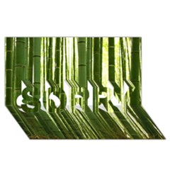 Bamboo Grove 2 Sorry 3d Greeting Card (8x4)