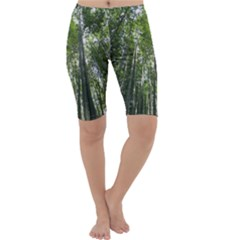 BAMBOO GROVE 1 Cropped Leggings by trendistuff