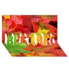 Autumn Leaves 1 Best Bro 3d Greeting Card (8x4)