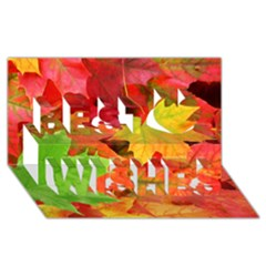 Autumn Leaves 1 Best Wish 3d Greeting Card (8x4)