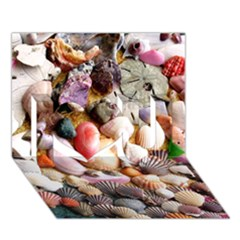 Colorful Sea Shells I Love You 3d Greeting Card (7x5)  by trendistuff