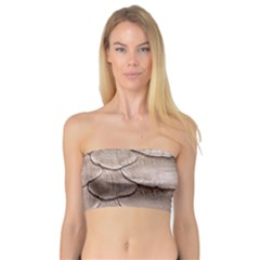 Scaly Leather Women s Bandeau Tops by trendistuff