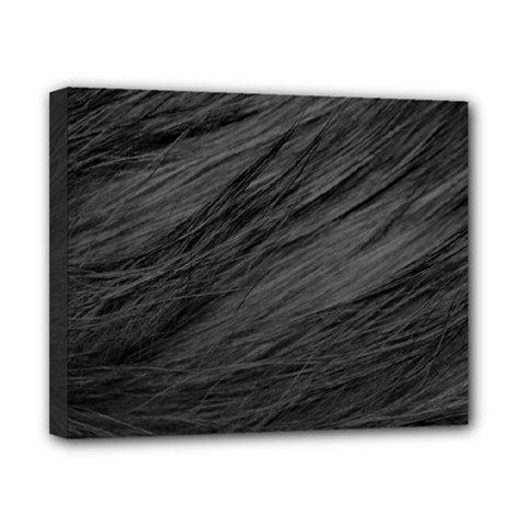 Long Haired Black Cat Fur Canvas 10  X 8  by trendistuff
