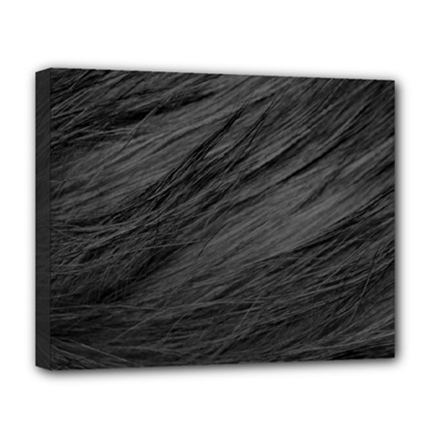 Long Haired Black Cat Fur Deluxe Canvas 20  X 16