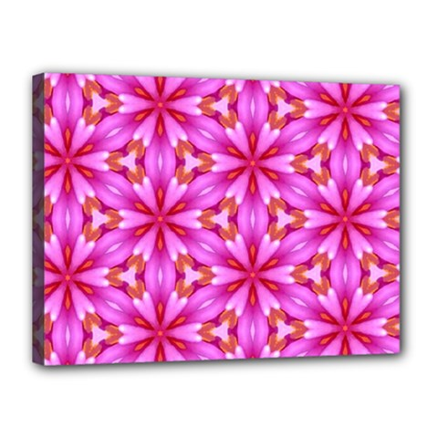 Cute Pretty Elegant Pattern Canvas 16  X 12  by creativemom