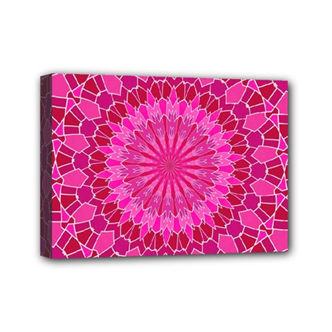 Pink And Red Mandala Mini Canvas 7  X 5  by LovelyDesigns4U