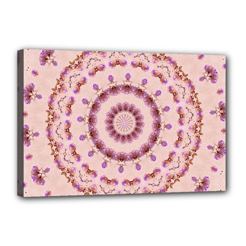 Pink And Purple Roses Mandala Canvas 18  X 12  by LovelyDesigns4U