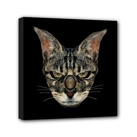 Angry Cyborg Cat Mini Canvas 6  X 6  by dflcprints
